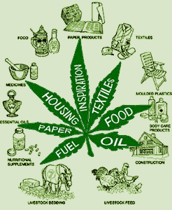 4 uses for Marijuana that you would never think of
