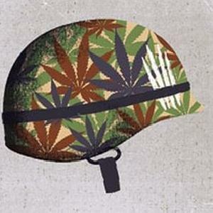 ptsd second amendment military veteran cannabis marijuana