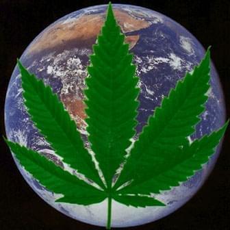 Australia's Marijuana Usage on the Rise