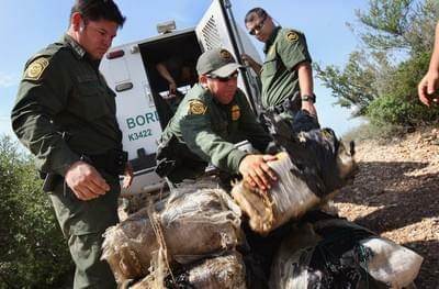 Border Agent Fired due to Medical Marijuana