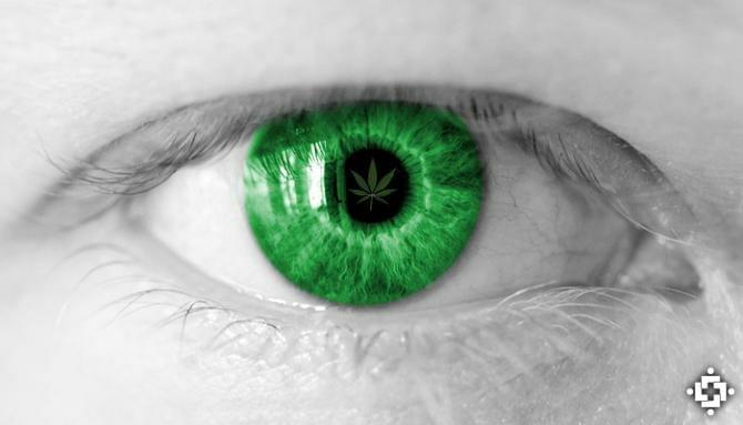 Cannabis May Help Delay Retinal Degeneration, Vision Loss