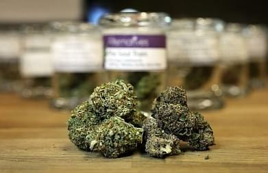 First import license for medical marijuana issued