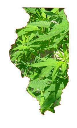 Illinois becomes the 20th state to join the medical marijuana movement