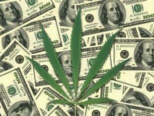 Illinois Investors Jump into Marijuana Business