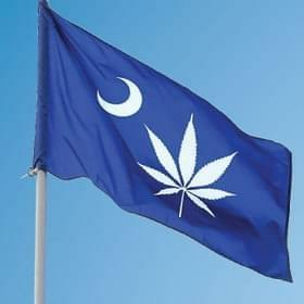Joint Committee Discussing Legalizing Marijuana in SC