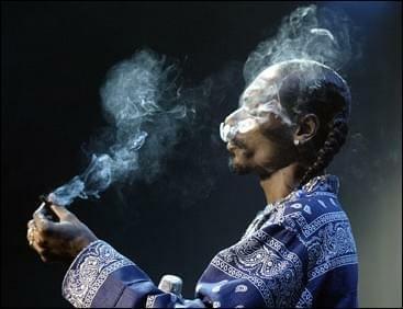 Marijuana Found on Snoop Dogg's Tour Bus
