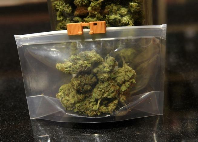 A prototype of the Stink Sack holds 7 ounces of pot. When the bags go to market, they will be opaque.<!--IPTC: DENVER, CO. - DECEMBER 05: This is a