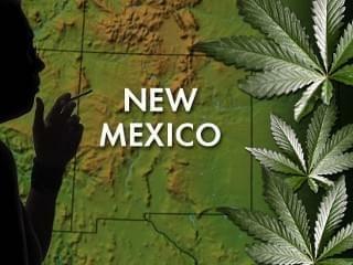 New Mexico Medical Marijuana Program Taking Off