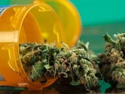 New study says medical marijuana wont boost usage in teens