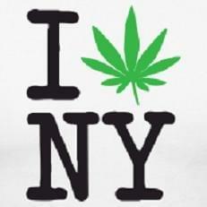 NYC making Smart Decisions about Marijuana?