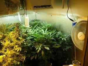 Rhode Island medical marijuana patients still face hurdles