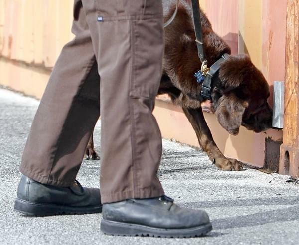 Supreme Court Agrees to take on Drug Sniffing Dog Case